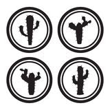 Cactus icons Stock Image