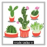 Cactus  illustrations Stock Images