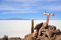 Cactus Island Incahuasi in Uyuni Salt Flats Stock Image