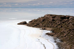Cactus Island, Salar de Uyuni Royalty Free Stock Image