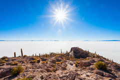 Cactus Island, Uyuni Royalty Free Stock Photo