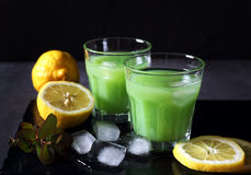 Cactus juice,  lemons and ice Royalty Free Stock Image