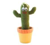 Cactus Knitting Royalty Free Stock Photos