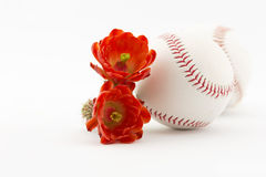 Cactus league baseballs with desert flowers Stock Photo