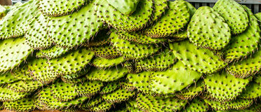 Cactus leaves in a market in Mexico Royalty Free Stock Images