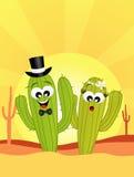 Cactus in liefde in de woestijn vector illustratie