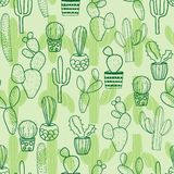 Cactus seamless repeat pattern royalty free illustration