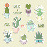Cactus are little friends. Set of a succulent. A small succulents and cactus in the teacup. Aloe vera, prickly pear, hoya ivy, gymnocalycium, haworthia royalty free illustration