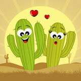 Cactus in love Stock Images
