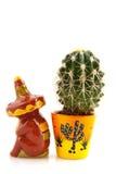 Cactus messicano Fotografia Stock Libera da Diritti