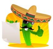 Cactus messicano con il rotolo Immagini Stock