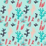 Cactus mignon et modèle succulent Photo libre de droits