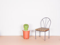 Cactus and mini chair, minimalism style Stock Photos