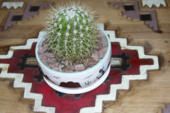 Cactus in Native American Pottery on Carved Wooden Royalty Free Stock Photo