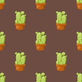 Cactus nature desert flower green mexican succulent tropical plant seamless pattern cacti floral vector illustration. Cactus flat style nature desert flower Royalty Free Stock Image