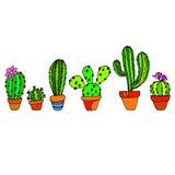 Cactus nature illustration vector plant green art Royalty Free Stock Photos