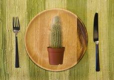 Cactus op de plaat Stock Fotografie