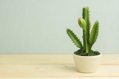 Cactus op houten lijst, uitstekende toon Stock Afbeelding