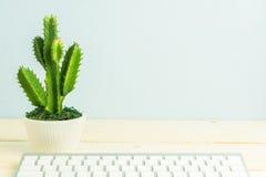 Cactus op houten lijst, uitstekende toon Stock Afbeeldingen