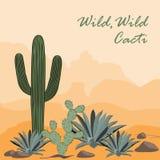 Cactus, Opuntia, y agavo en el desierto Fondo natural Ilustración del vector