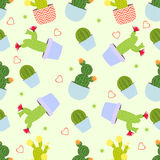 Cactus pattern  background. Seamless pattern with cute cactus. Royalty Free Stock Photos