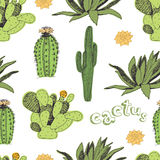 Cactus pattern Royalty Free Stock Photo