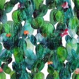 Cactus pattern in watercolor style royalty free illustration