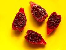 Cactus pear Stock Photography