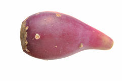 Cactus pear Royalty Free Stock Images