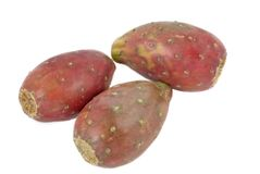 Cactus pears isolated. On white background Royalty Free Stock Photos