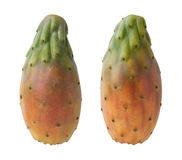 Cactus Pears Isolated with clipping path Royalty Free Stock Images
