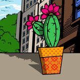 Cactus plant in the city Royalty Free Stock Photography