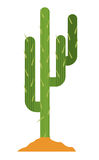 Cactus plant with earth design Stock Image