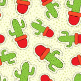 Cactus plant hand drawn patch on seamless pattern Royalty Free Stock Image