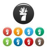 Cactus plant pot icons set color vector illustration