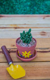 Cactus. Planting trees for Earth Day and  Arbor Day Royalty Free Stock Photo