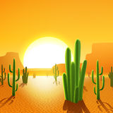 Cactus Plants In Desert Stock Photo