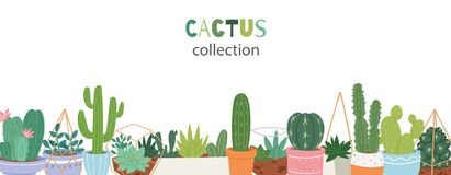Cactus plants in garden pottery with green hand written font. Green Cacti, aloe vera, cactus with flowers and succulents vector illustration