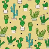 Cactus plants texture seamless pattern background Stock Image