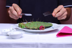 Cactus on a plate. Man eating cactus in a restaurant, unhealthy eating concept Royalty Free Stock Photos