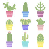 cactus in a pot. Icon of cactus flower. Desert plant. Vector illustration of a colored cartoon  cactus Royalty Free Stock Images