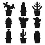 cactus in a pot. Icon of cactus flower. Desert plant. Stock Photos