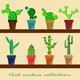 Cactus in pots collection set Royalty Free Stock Image
