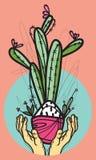 Cactus pour vous Photos libres de droits