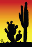 Cactus prickly black silhouette Royalty Free Stock Photography