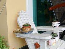 Cactus que adorna en la silla de madera blanca Fotos de archivo