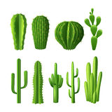 Cactus Realistic Set Royalty Free Stock Images