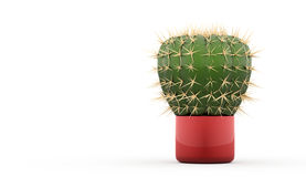Cactus rendered Royalty Free Stock Photos