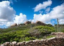 Cactus s'élevant sur les formations d'Ayo Rock Photographie stock