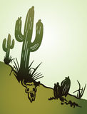 Cactus saguaro. Vector background Stock Photography